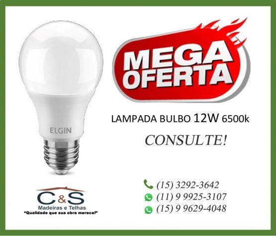 lampada-elgin-bulbo-12w-6500k